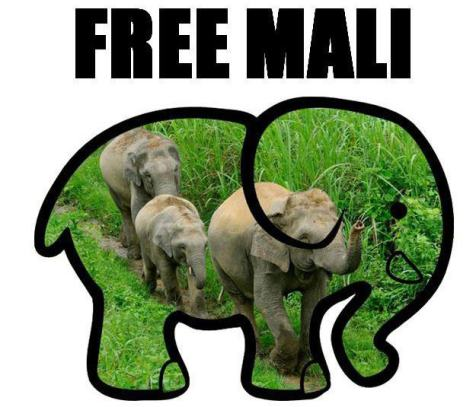 PETA's  free Mali movement
